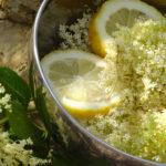 Zitronen und Holunderblüten